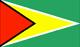 ガイアナ Flag